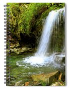 Grotto Falls On Trillium Gap Trail In Smoky Mountains National Park Spiral Notebook