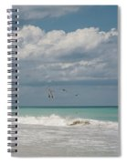 Group Of Pelicans Above The Ocean Spiral Notebook