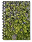 Grove Of Pines Aerial Spiral Notebook