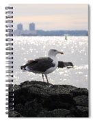Gull Isle II Spiral Notebook