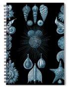 Haeckel Thalamphora Spiral Notebook