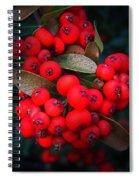 Happy Berries Spiral Notebook