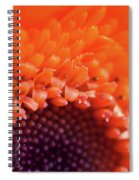 Happy Colors Spiral Notebook
