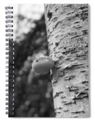 Heart On A Tree Spiral Notebook