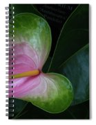 Hearts And Flowers Spiral Notebook