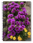 Hedgehog Cactus And Yellow Daisies Spiral Notebook