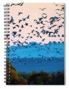 Herd Of Snow Geese In Flight, Soccoro Spiral Notebook