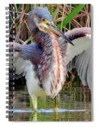 Herding Supper Spiral Notebook
