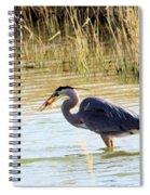 Heron Capturing A Fish Spiral Notebook