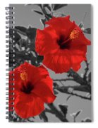 Hibiscus Selective Color Spiral Notebook