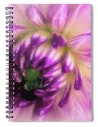 Hidden Depth Spiral Notebook