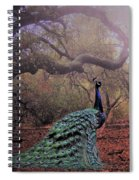 Secret Place Spiral Notebook