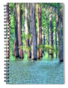 High Bayou Water Spiral Notebook