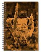 Highjumper Spiral Notebook