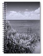 Hiking On Tiritiri Matangi New Zealand Bw Spiral Notebook