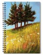 Hillside Evergreens Spiral Notebook