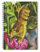 Honey Bee On Mexican Heather Spiral Notebook