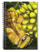 Honey Bee On Wild Golden Glow Spiral Notebook