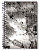 Hoodoo's Black White Utah  Spiral Notebook