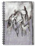 Horse In A Field Spiral Notebook