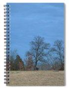 Hot Spiral Notebook