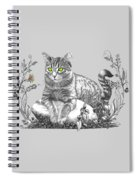 House Cat Spiral Notebook