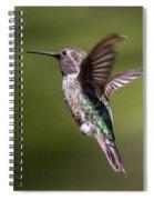 Hovering Hummer Spiral Notebook