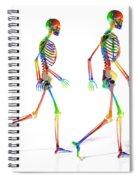 Human Skeleton Pair Spiral Notebook