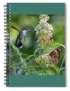 Hummingbird And Monarch Spiral Notebook