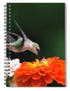 Hummingbird In Flight With Orange Zinnia Flower Spiral Notebook