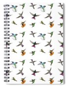 Hummingbirds Of Trinidad And Tobago On White Spiral Notebook