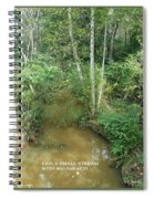 I Am A Small Stream With Big Impact Spiral Notebook
