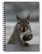 I Am Back Spiral Notebook