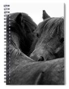 I Just Need A Hug. The Black Pony Bw Transparent Spiral Notebook