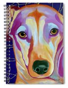I Should Have Been Jackson Pollock's Dog Spiral Notebook