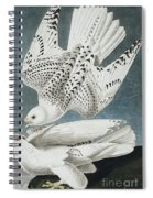 Iceland Falcon Or Jer Falcon By Audubon Spiral Notebook