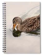 In Cool Clear Waters Spiral Notebook