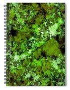 In Disguise Spiral Notebook