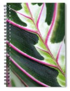 In Your Arms Spiral Notebook