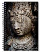 Indian Temple Goddess Spiral Notebook