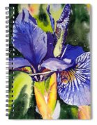 Iris In Bloom Spiral Notebook
