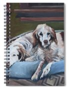 Irish Red And White Setters - Archer Dogs Spiral Notebook
