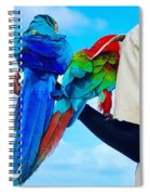 Island Birds  Spiral Notebook