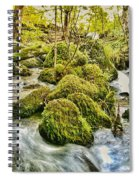 Janet's Foss Flow  Spiral Notebook