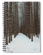 January Forest Spiral Notebook