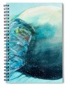 Jellyfish 4 Spiral Notebook