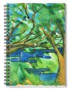 Jigsaw Canyon Spiral Notebook
