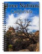 Joshua Tree National Park, California Box Canyon 02 Spiral Notebook
