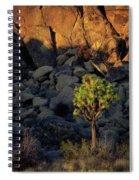 Joushua Sunset 1 Spiral Notebook
