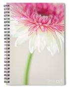 Joyful Whisper Spiral Notebook